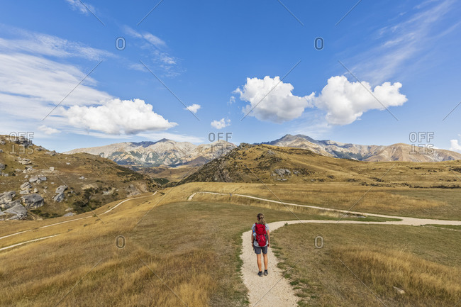 New Zealand- Female hiker standing in middle of winding road admiring landscape of Cave Stream Scenic Reserve