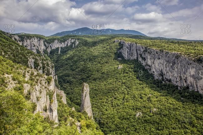 Lime columns in Vela Draga Canyon- Ucka Nature Park- Istria- Croatia