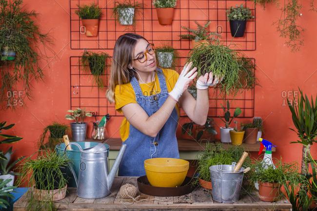 Woman examining Rhipsalis plant on her terrace