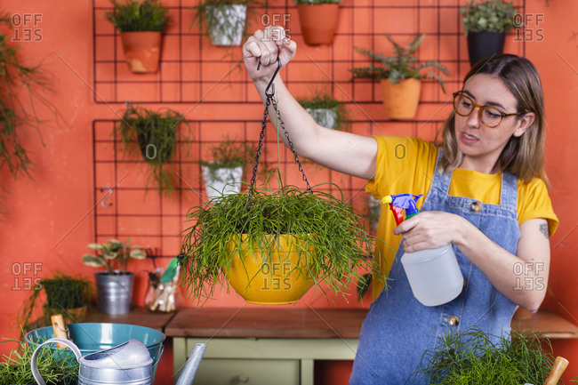 Woman spraying water on Rhipsalis plant on her terrace
