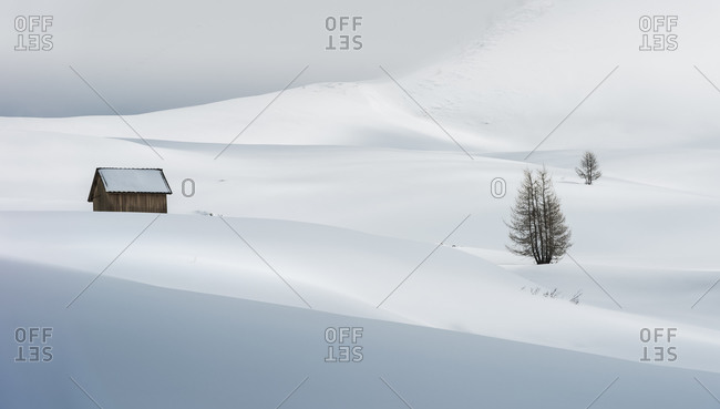Snowcapped mountain hut with lone trees in Giau pass, dolomites, Cortina d'Ampezzo, Italy, Europe