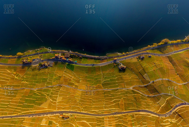 Aerial view of Vineyards and Lake Geneva, Swiss Riviera, Switzerland