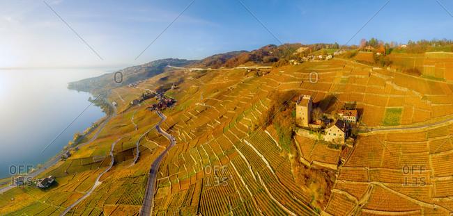 Aerial view of Vineyards and Lake Geneva, Swiss Riviera, Switzerland