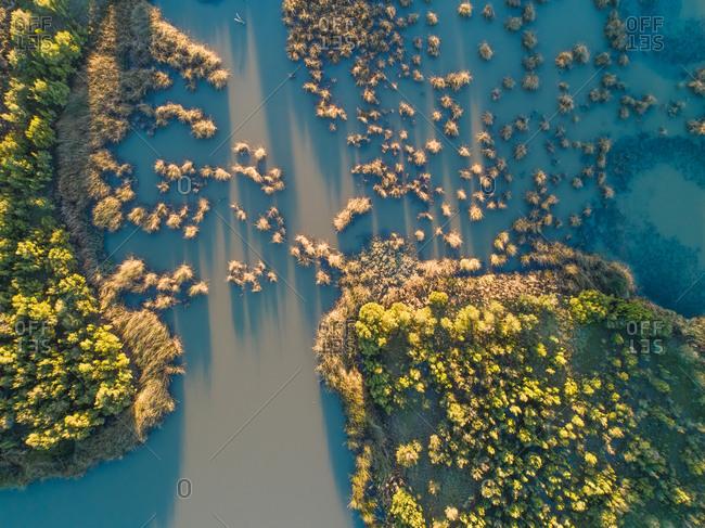 Aerial view of vegetation, Rowville, Victoria, Australia