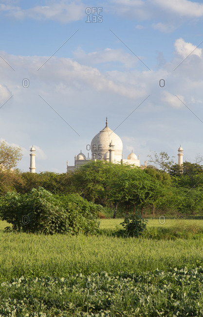 View of The Taj Mahal in the distance in Agra, India