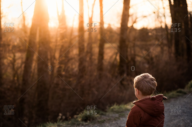 Young boy gazing through trees at sunset