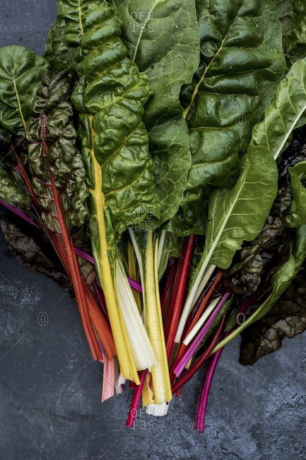 High angle close up of a bunch of freshly picked Swiss rainbow chard on grey background.