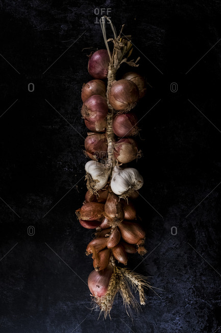 High angle close up of string of onions and garlic on black background.