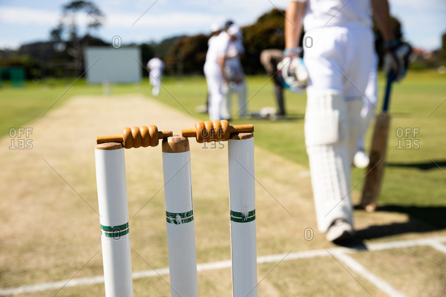 Close up view of cricket stumps on a cricket pitch
