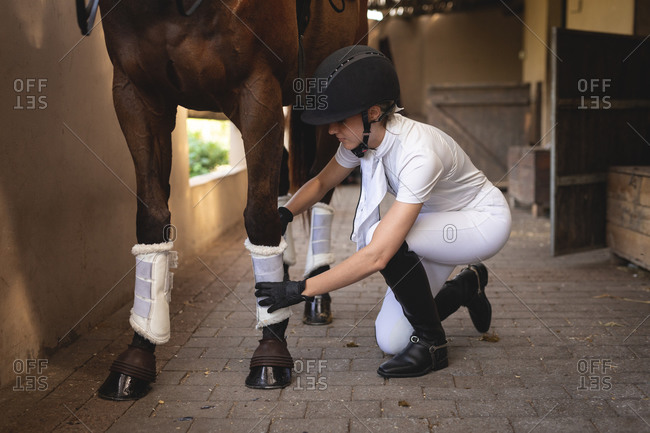 Woman preparing her dressage horse in a stable