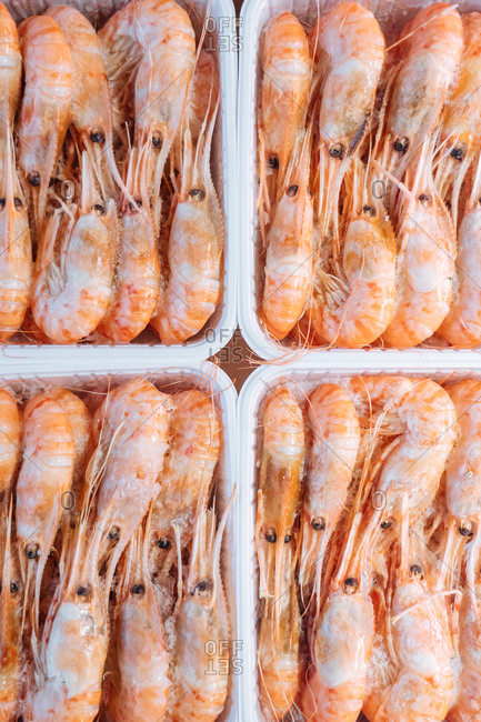 Top view of plastic boxes with cool fresh shrimps placed on stall in grocery store
