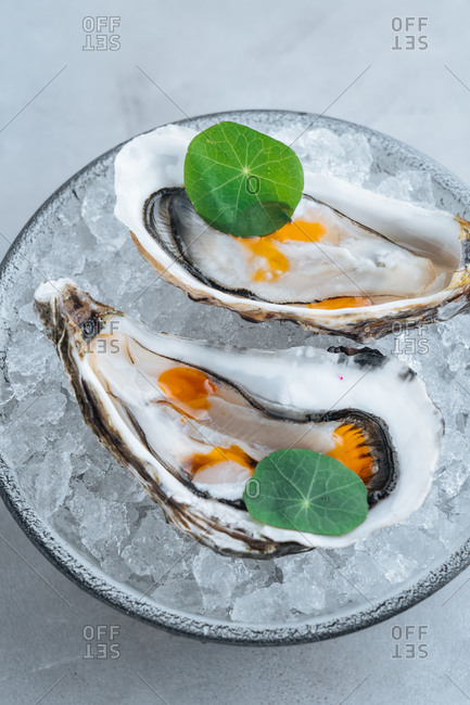 Delicious oysters on Ice cube on a bowl in a white background in a restaurant