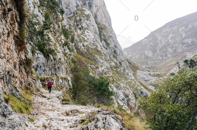 Back view of unrecognizable active woman hiker in red jacket with heavy backpack looking up at mountain in peaks of Europe, Asturias, Spain