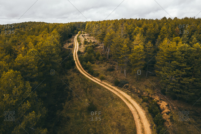 Drone aerial top view of scenic landscape of rural road motorway through forest in countryside