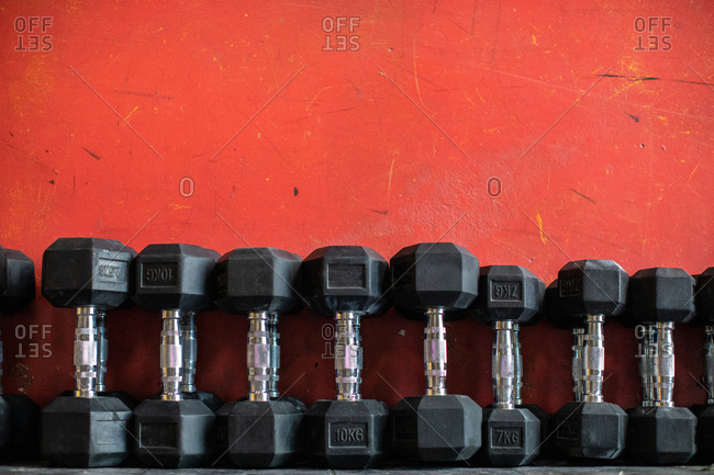 Set of dumbbells lying on rack in gym
