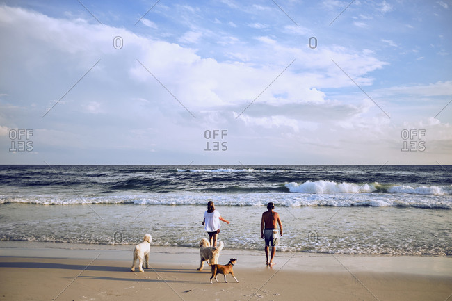 Middle aged couple walking on beach with family of dogs
