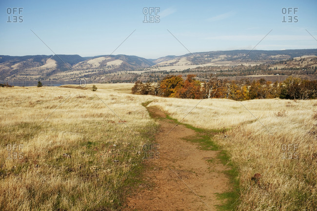 Trail in Rowena Crest looking out towards Columbia river and hills