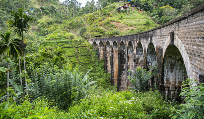 rail road viaduct in Ella / Sri Lanka