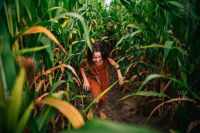 Girl running through a corn field, USA