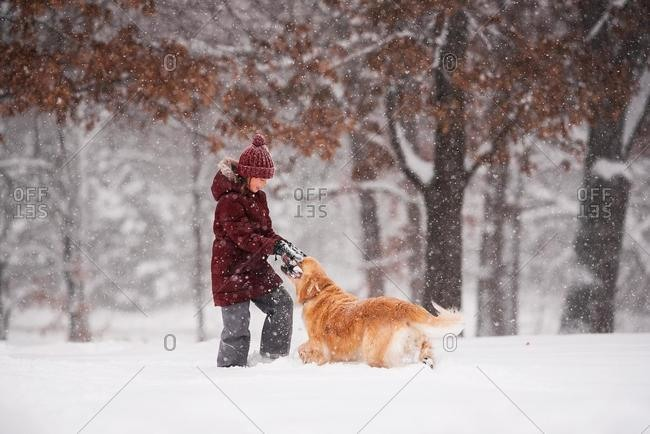 Girl standing in the snow playing with her golden retriever dog, Wisconsin, USA