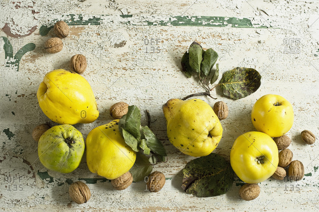 Quinces (Cydonia oblong) with leaves and walnuts on rustic wooden surface