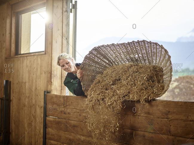 Female farmer pouring straw into barn on a farm