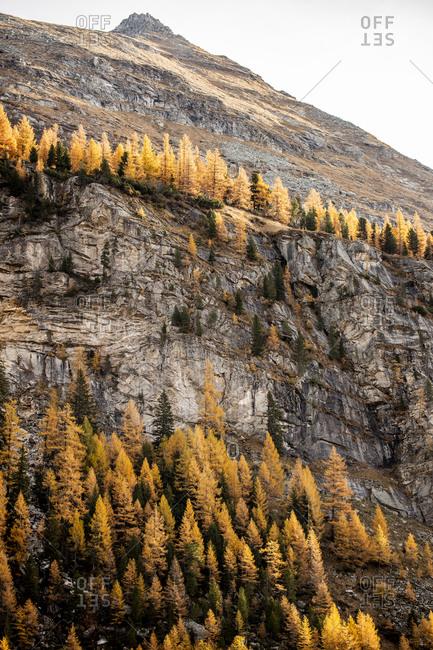 Austria- Carinthia- Cliff of Molltal Glacier in autumn