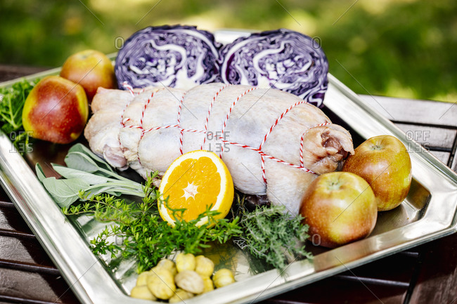 Austria- Tray with raw goose meat- red cabbage- herbs and fruits