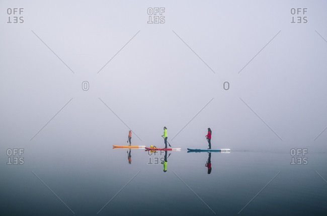 Three people stand up paddle surfing on a lake in the fog