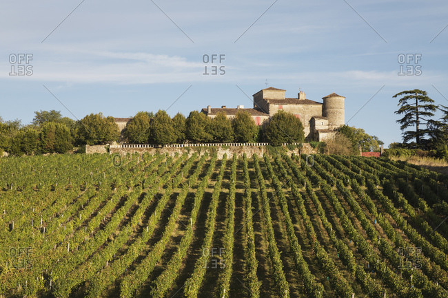 France- Nouvelle-Aquitaine- Department Gironde- Bordeaux wine region- vineyards and Chateau Lacaussade