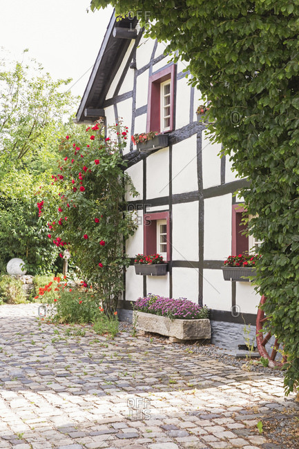 Germany- North Rhine Westfalia- Eifel- Monschauer Land- Monschau region- village Hoefen- Half timbered house surrounded with flowers