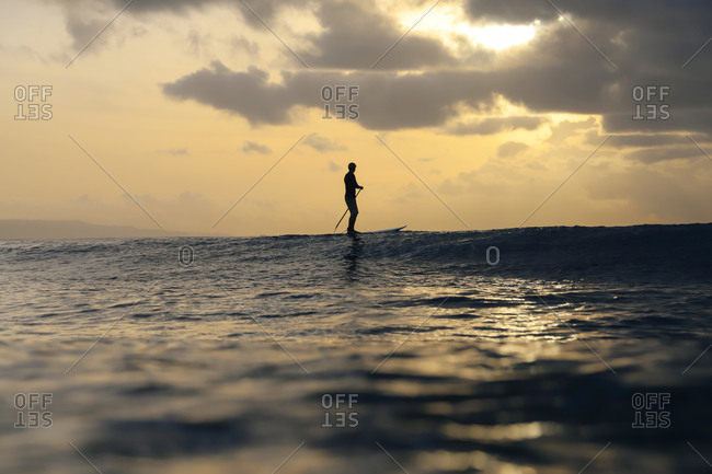 Sup surfer at sunset- Bali- Indonesia