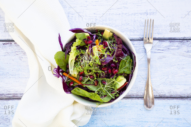 Two bowls of salad with red cabbage- carrots- lettuce leaves- avocado- pomegranate seeds and cress