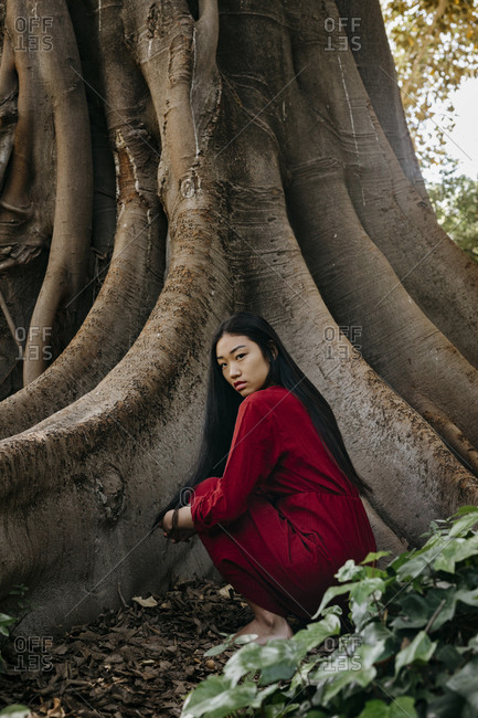 Beautiful young woman wearing a red dress crouching at a tree with large roots