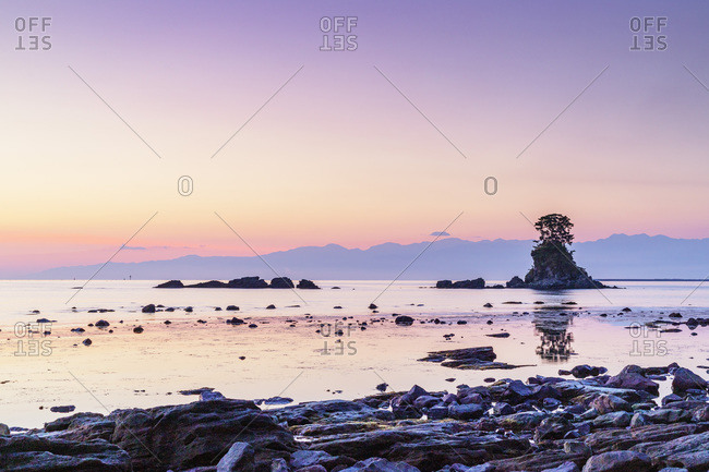 Pine tree on a rock outcrop in the Sea of Japan, Ameharakaigan, Toyama prefecture, Honshu, Japan, Asia