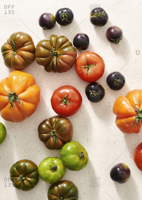 Sicilian tomatoes, black tomatoes, green tomatoes and orange tomatoes on a terrazzo surface