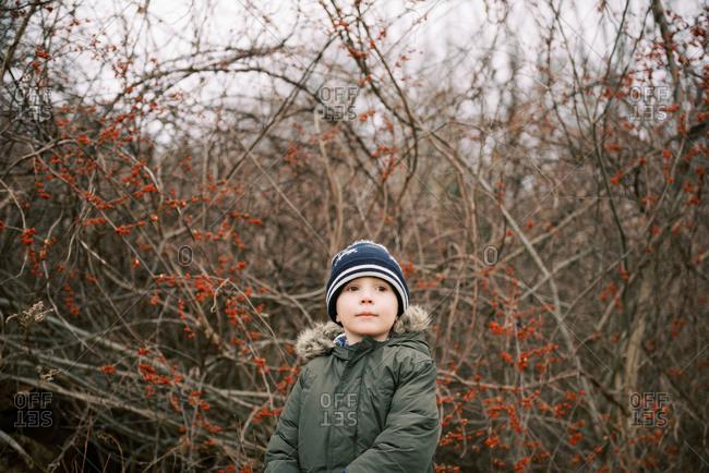 Little boy during a wintery nature walk.