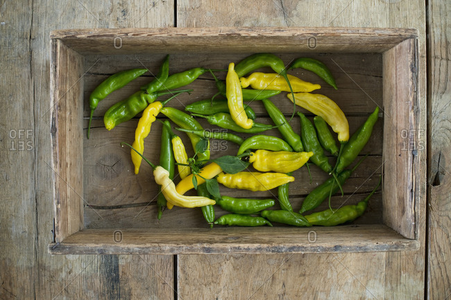 Yellow and green chilies (capsicum)- hot peppers- with leaves in rustic wooden crate