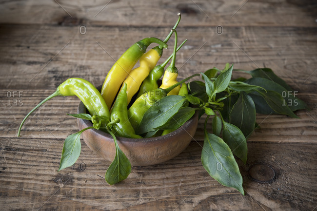 Yellow and green chilies (capsicum)- hot peppers in wooden bowl on table