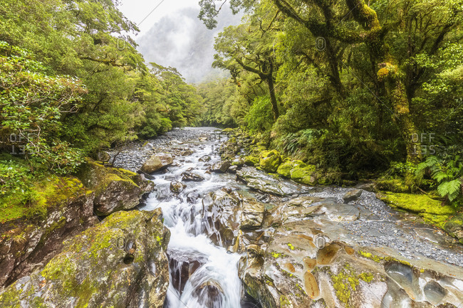 New Zealand- Oceania- South Island- Southland- Fiordland National Park- Cleddau river and waterfall