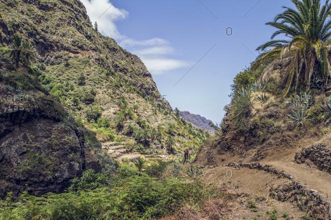 Spain- La Gomera- Hermigua- Man hiking in Germigua valley