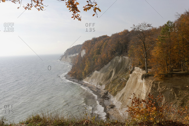 Germany- Ruegen- Chalk cliffs with autumn forest at Baltic sea