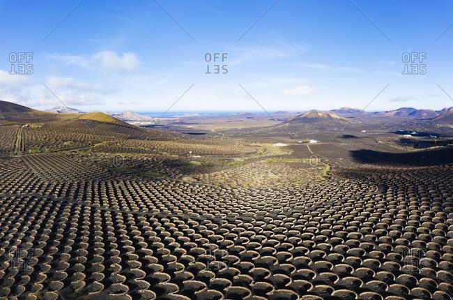 Wine-growing area La Geria, near Yaiza, drone shot, Lanzarote, Canary Islands, Spain, Europe