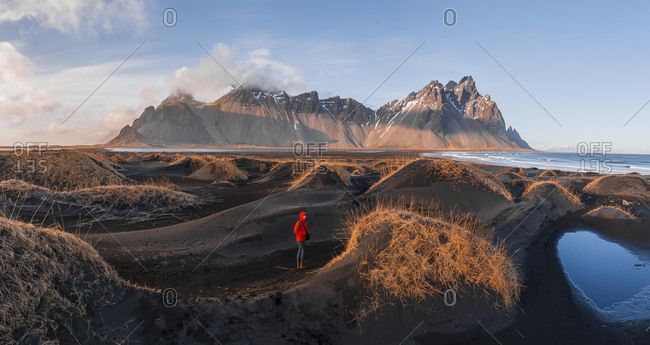 Evening atmosphere at the long lava beach, man between black sand dunes covered with dry grass, mountains Klifatindur, Eystrahorn and Kambhorn, headland Stokksnes, mountain range Klifatindur, Austurland, East Iceland, Iceland, Europe