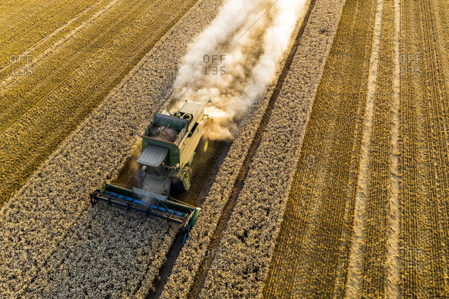 March 12, 2020: Aerial view, combine harvester, driving in the evening sun over a dry field with a lot of dust, Wetterau, Hesse, Germany, Europe