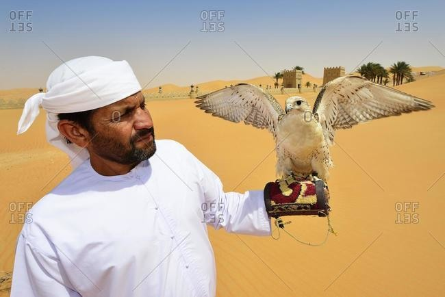 March 12, 2020: Falconer in front of the desert luxury hotel Anantara Qasr Al Sarab, in the middle of high sand dunes, in the Empty Quarter called sand desert Rub Al Khali, Emirate of Abu Dhabi, United Arab Emirates, Asia