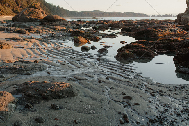 Tide pools on beach in Washington State, USA