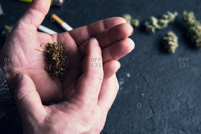 Unrecognizable male making cannabis joint at home