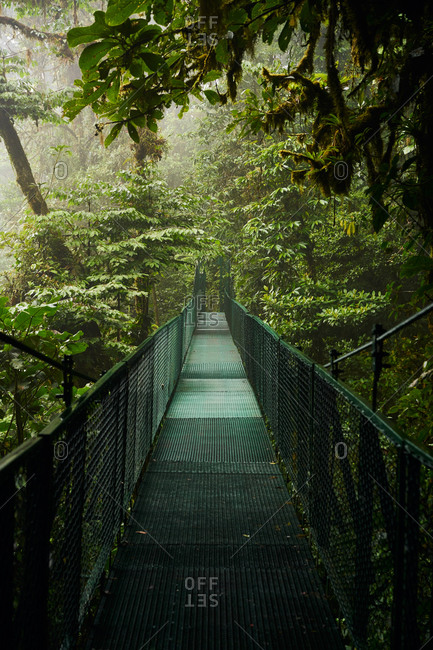 Narrow metal bridge going through thick rainforest with green trees in Costa Rica