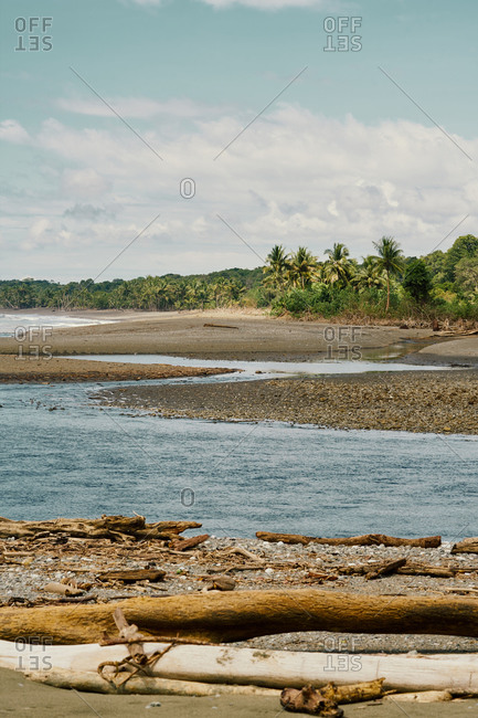 Picturesque scenery of bending river and logs on shore in Costa Rica